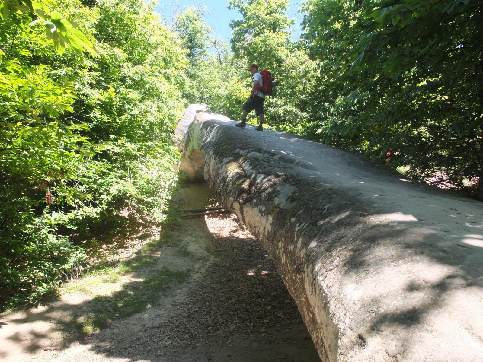 Escursione-Ponte-Ercole